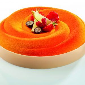entremet cake silicone mold - Pavoni